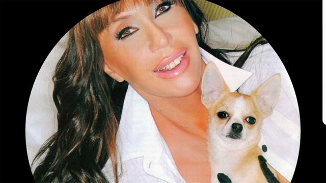 Murió Kristóbal, el famoso perro de Moria Casán